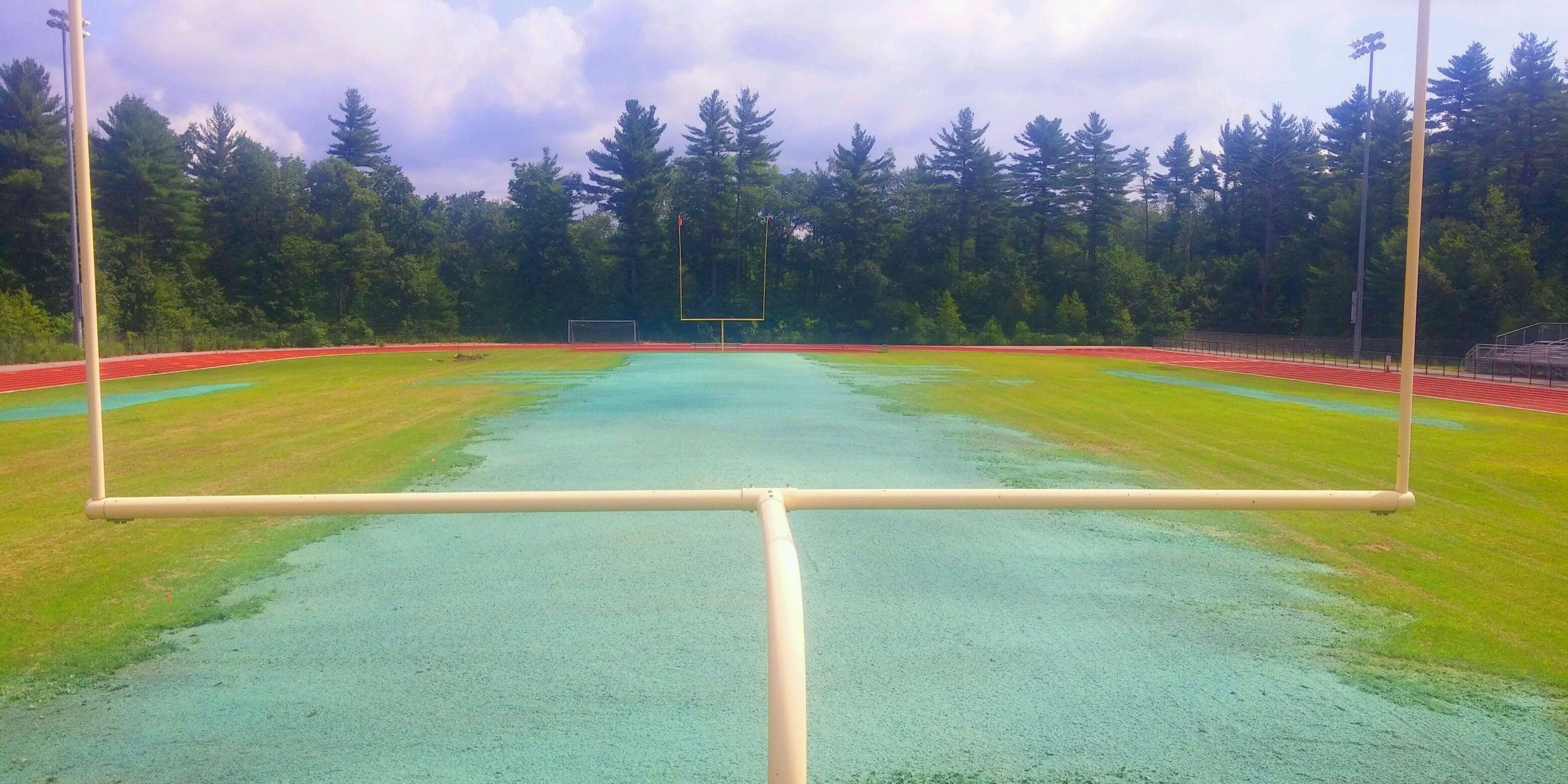 hydroseed for athletic fields
